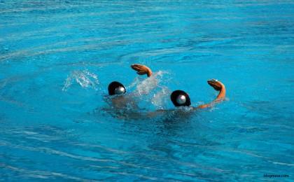 първенство по синхронно плуване 2017 варна
